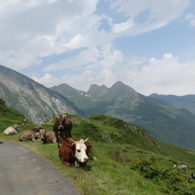 Cycling Col d'Aubisque - Road Cycling Europe