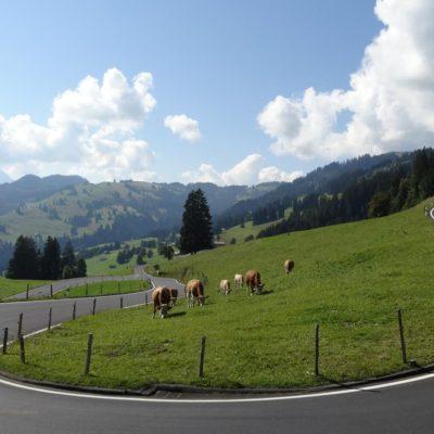 Jaunpass-Gantrisch Loop - Switzerland - Road Cycling Europe